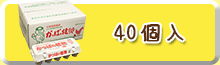 かっぱの健卵 40個入り