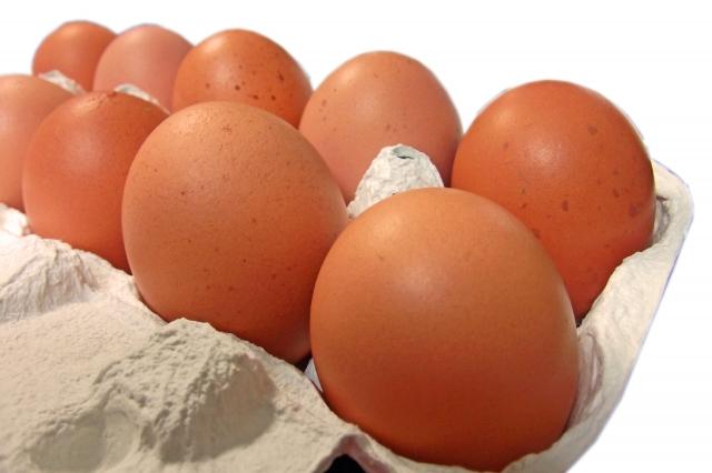 卵は完全栄養食品