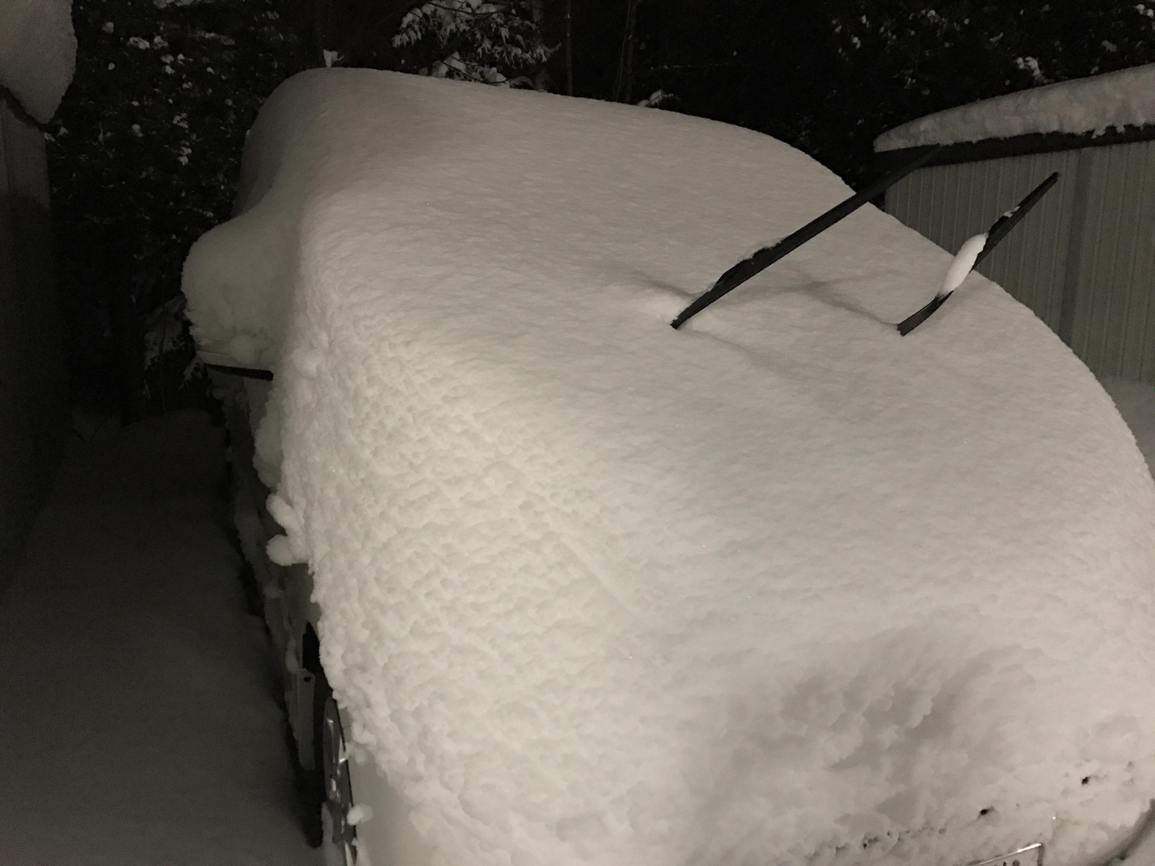 雪下ろし前の車