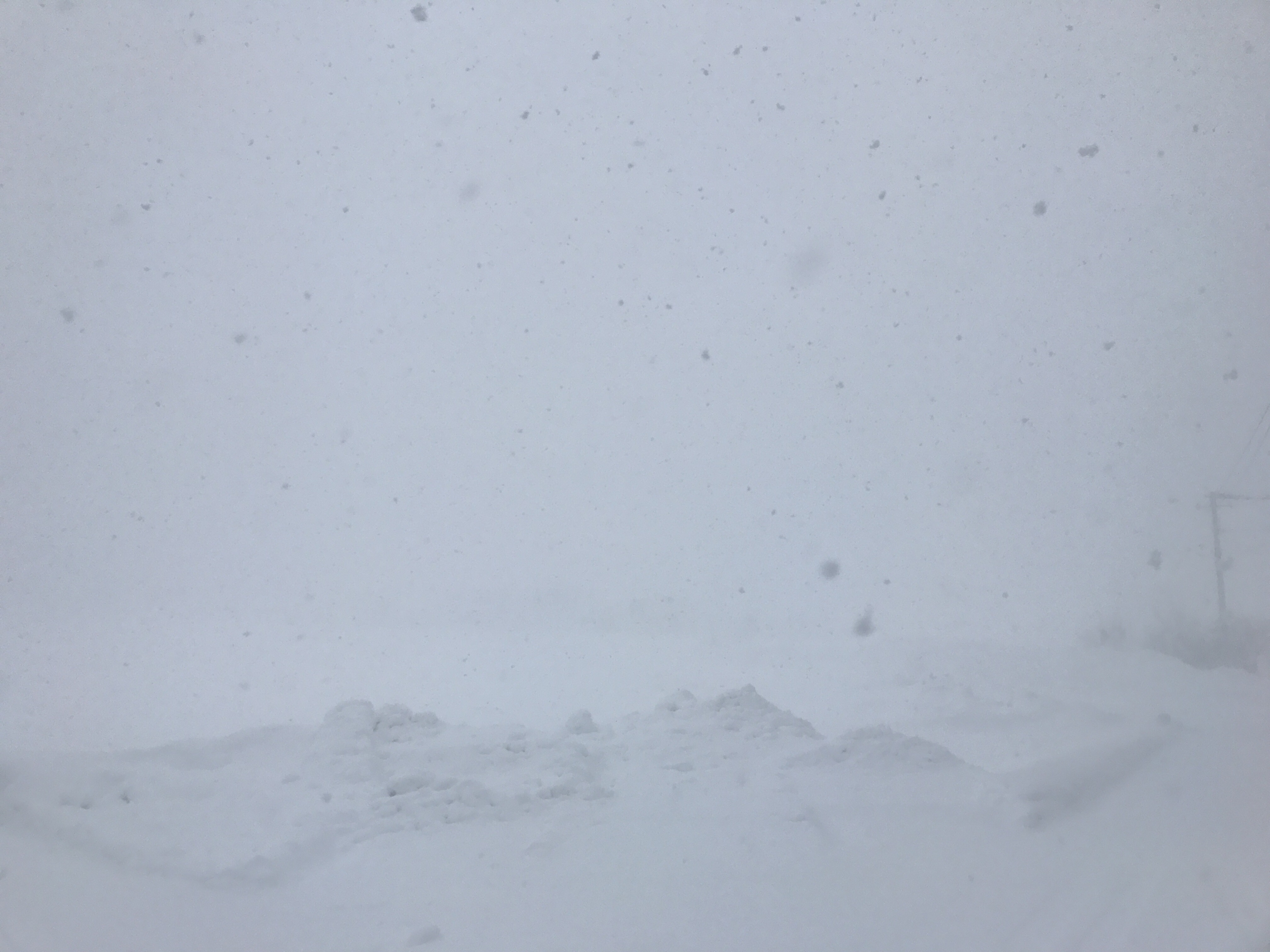 視界がないくらいの猛吹雪