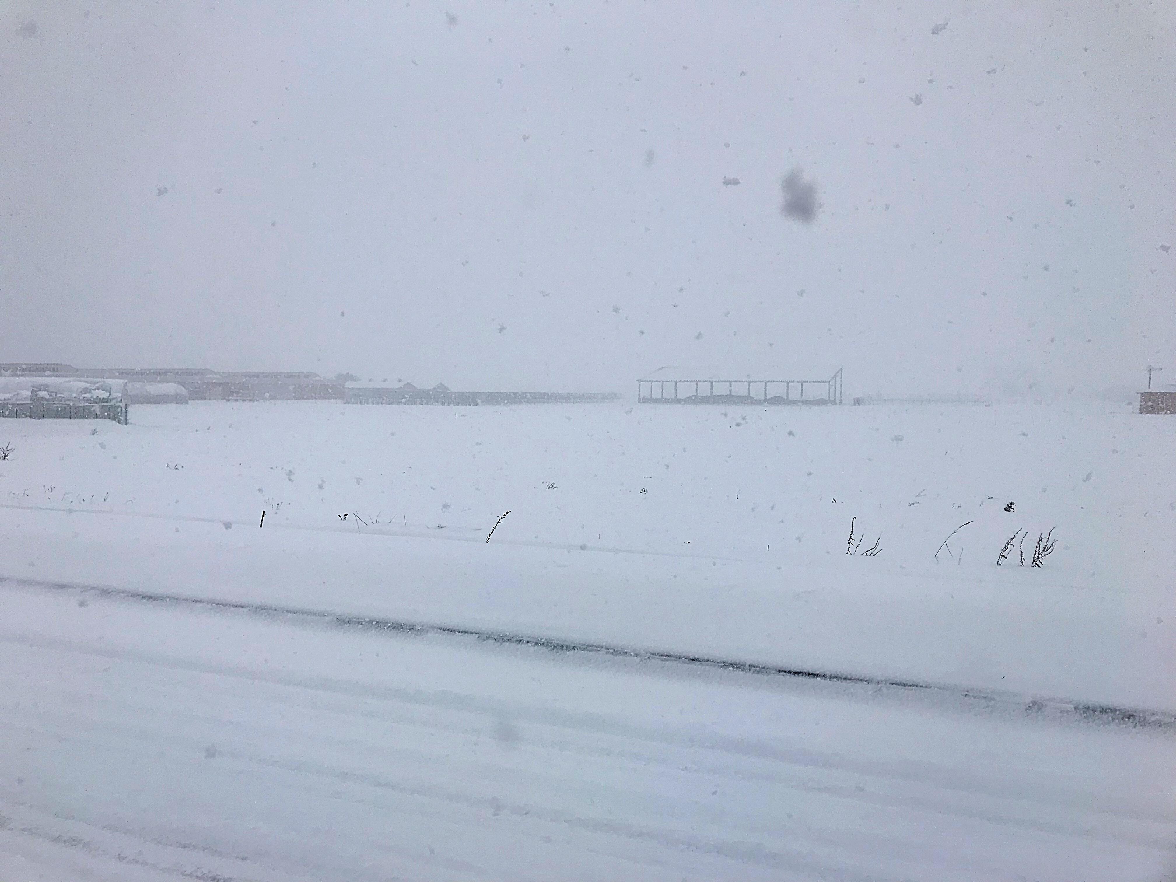 午前中の雪が降ってる景色