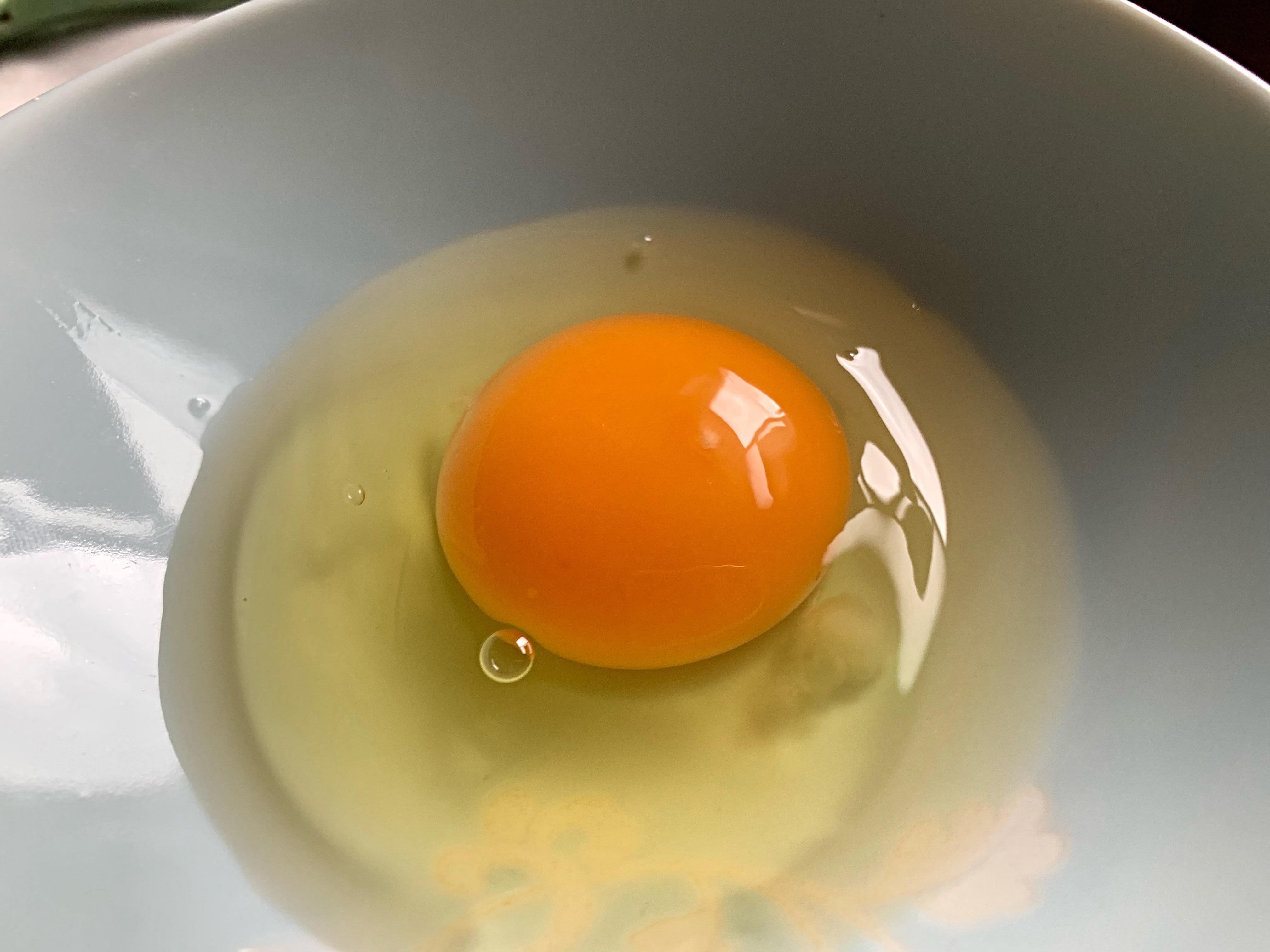 かっぱの健卵
