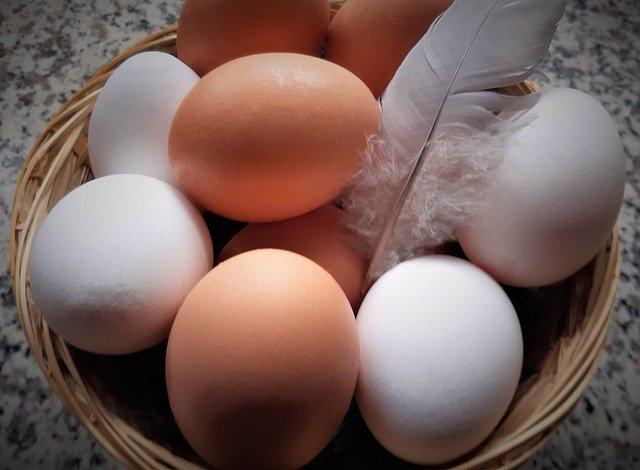 egg-5014737_640